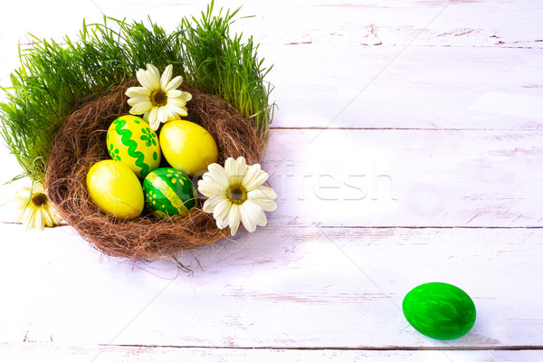 Amarelo verde ovos de páscoa ninho margaridas flores Foto stock © TasiPas