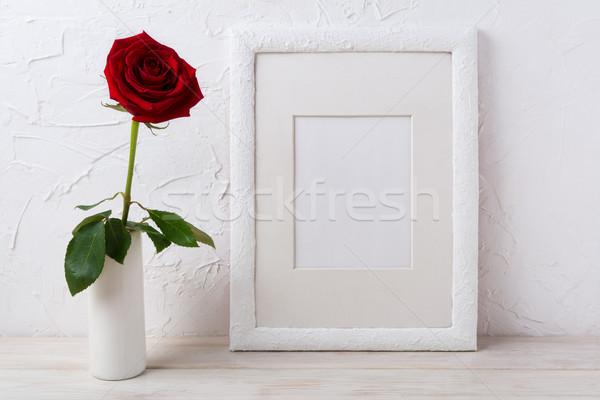 Biały ramki ciemne czerwona róża Wazon Zdjęcia stock © TasiPas