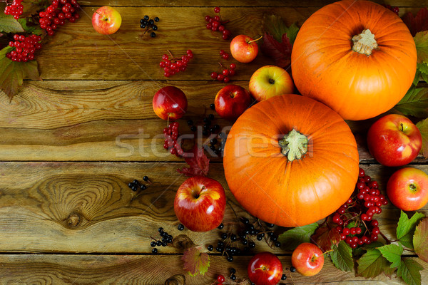 Thanksgiving background with pumpkins, berries and apples Stock photo © TasiPas