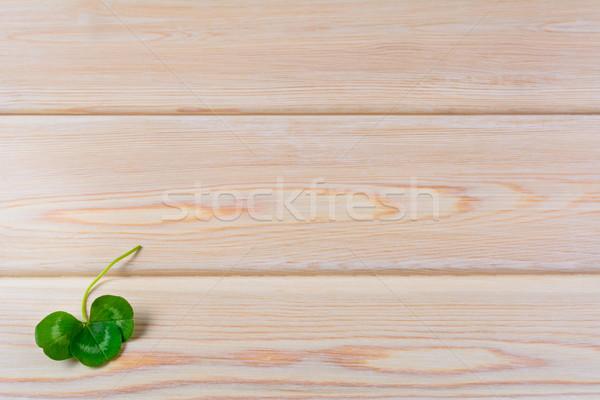 Closeup shamrock setup on rustic wooden background Stock photo © TasiPas