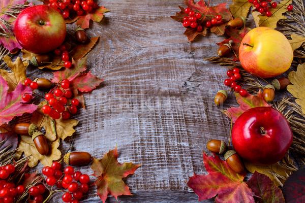 Obfity zbiorów jabłka jagody spadek pozostawia Zdjęcia stock © TasiPas
