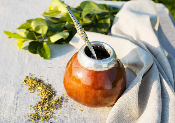 Yerba mate in gourd calabash with bombilla  Stock photo © TasiPas