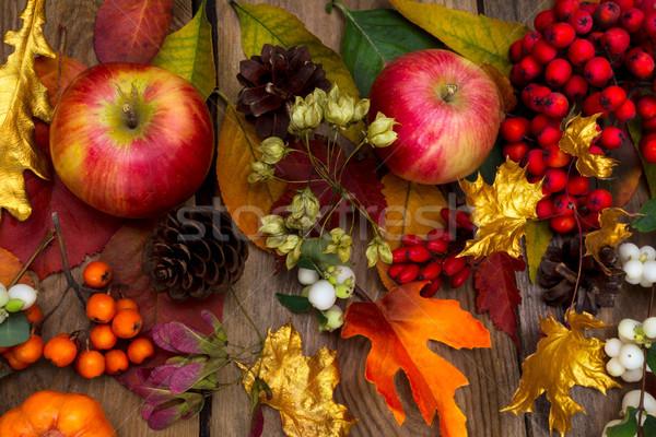 благодарение яблоки клен оранжевый листьев Сток-фото © TasiPas
