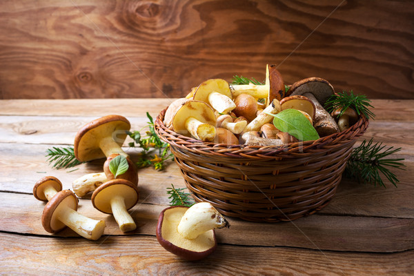 Forest picking edible mushrooms in wicker basket on wooden backg Stock photo © TasiPas
