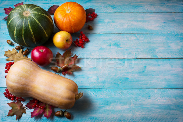 Thanksgiving  greeting with pumpkins on blue wooden background Stock photo © TasiPas