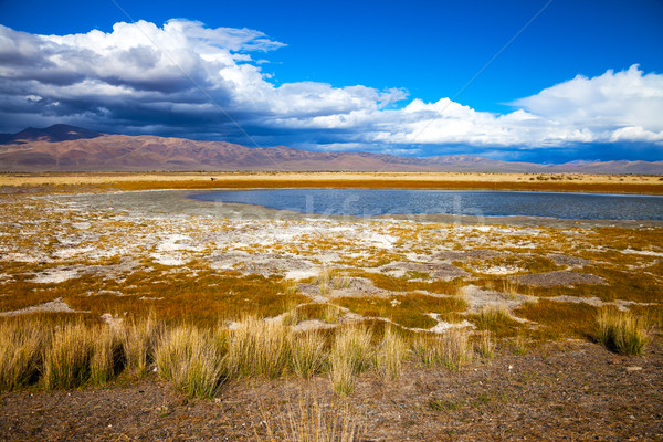 Lake in bright multi-colored steppe Stock photo © TasiPas