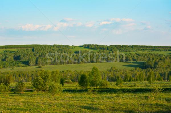 лет закат красивой зеленый холмы пейзаж Сток-фото © TasiPas