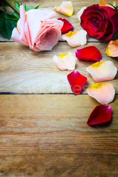 Rózsaszín vörös rózsák szirmok régi fa copy space piros Stock fotó © TasiPas