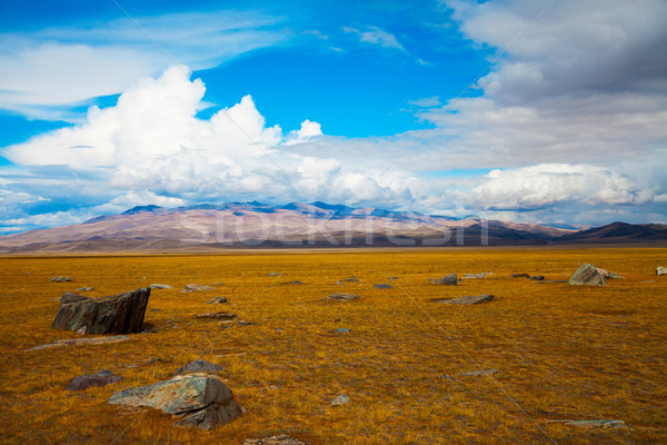 Multicolored steppe landscape with large stones Stock photo © TasiPas