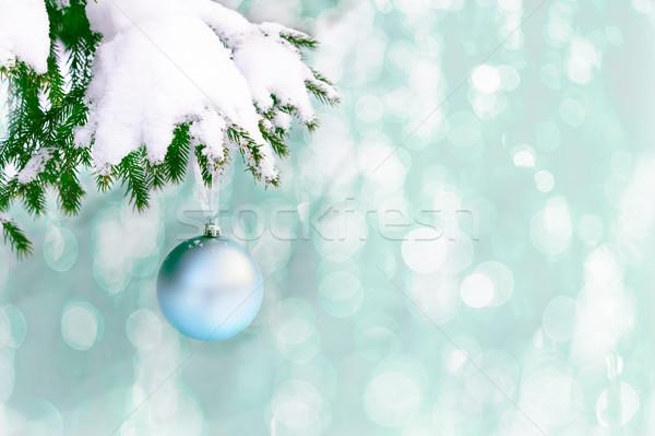Nieve cubierto abeto rama pálido azul Foto stock © TasiPas