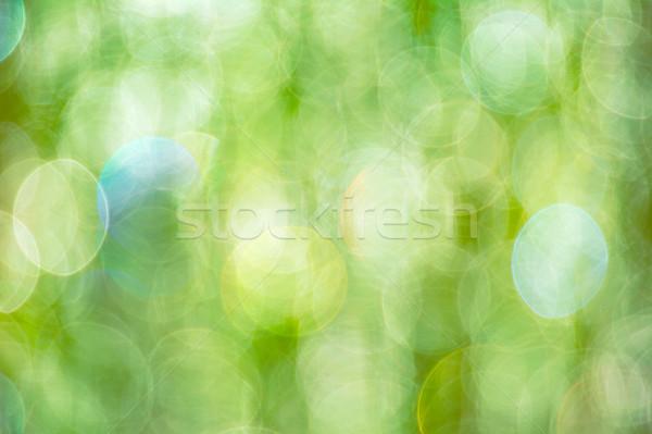 Bright green bokeh defocused background Stock photo © TasiPas