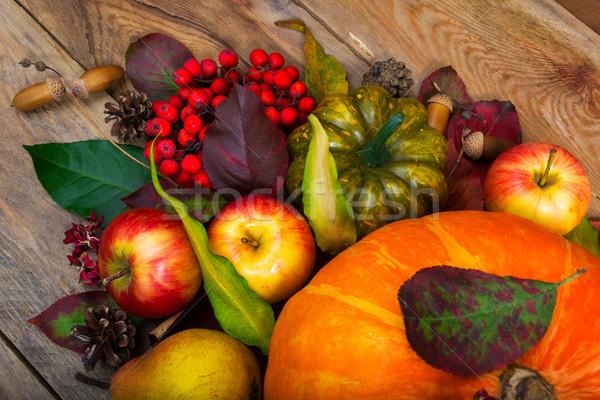 Thanksgiving background with pumpkin, apples, rowan, green squas Stock photo © TasiPas