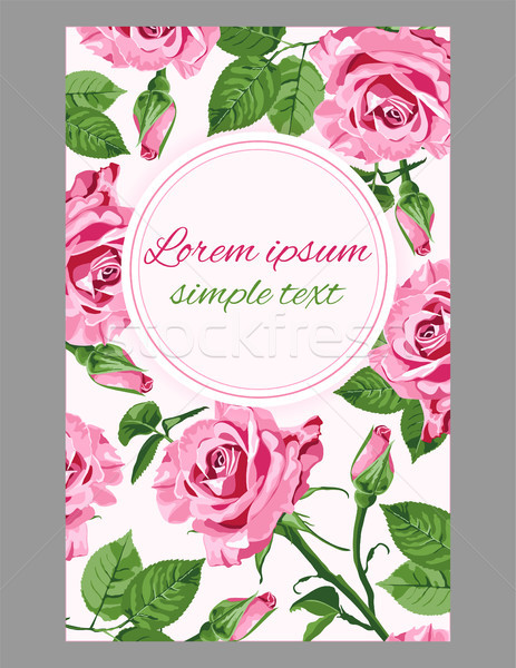 Stock photo: Vector greeting with pink roses and place for text