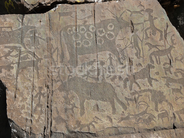 People and animals petroglyphs Stock photo © TasiPas