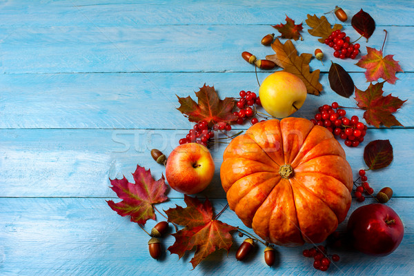 Pumpkin, apples, berries, acorns and fall leaves on blue backgro Stock photo © TasiPas