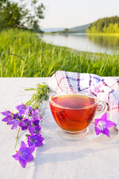 Cup tè servito blu banca fiume Foto d'archivio © TasiPas