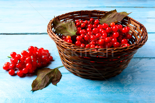 Forest berries in wicker basket on blue wooden table Stock photo © TasiPas