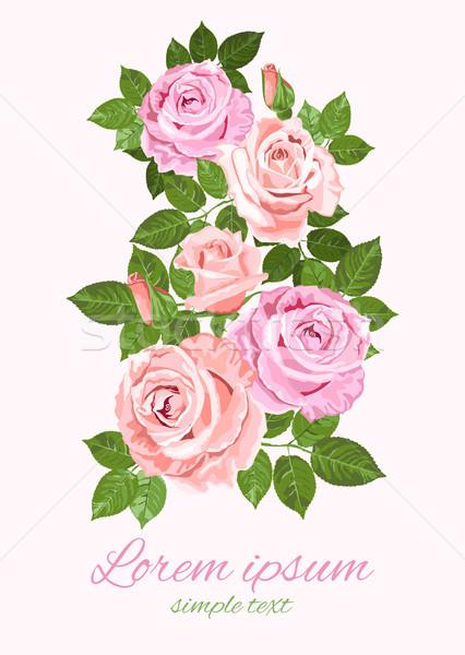 Rosa beige rose foglie verdi biglietto d'auguri vettore Foto d'archivio © TasiPas
