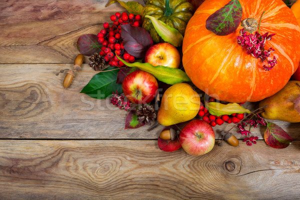 Thanksgiving background with pumpkin, apples, pear table centerp Stock photo © TasiPas