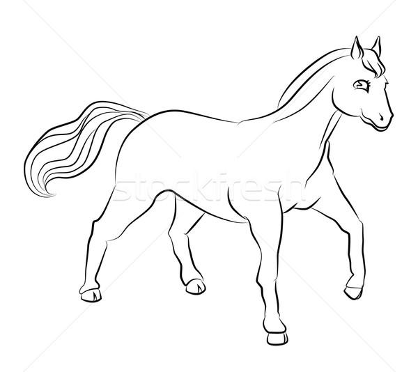 black and white image of a horse Stock photo © tatiana3337