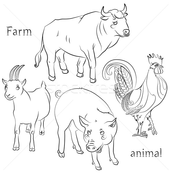 black and white image of a bull, cock, pig and goat Stock photo © tatiana3337