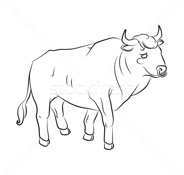 Stock photo: black and white image of a bull