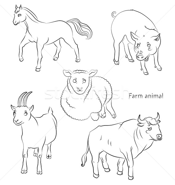 black and white image of a bull, sheep, horse pig and goat Stock photo © tatiana3337