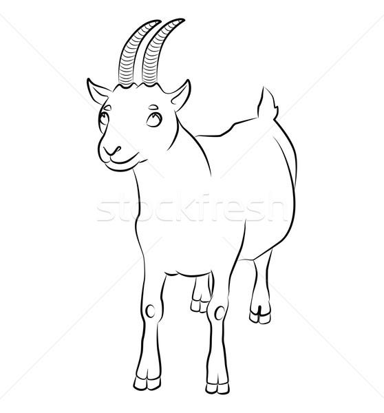 Zwart wit afbeelding geit perfect boeken niet Stockfoto © tatiana3337