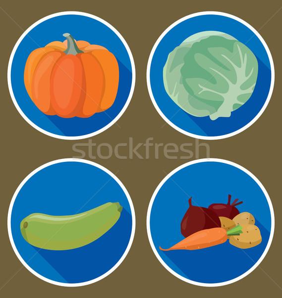 Zöldségek sütőtök cukkini káposzta krumpli sárgarépa Stock fotó © tatiana3337