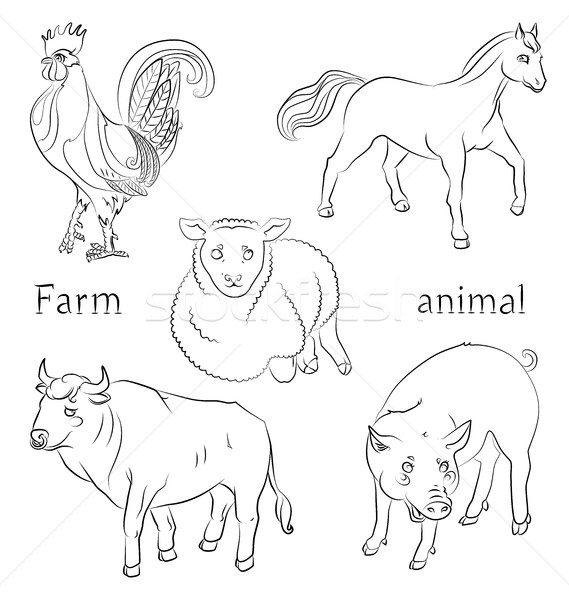 black and white image of a bull, cock, pig, horse and sheep Stock photo © tatiana3337