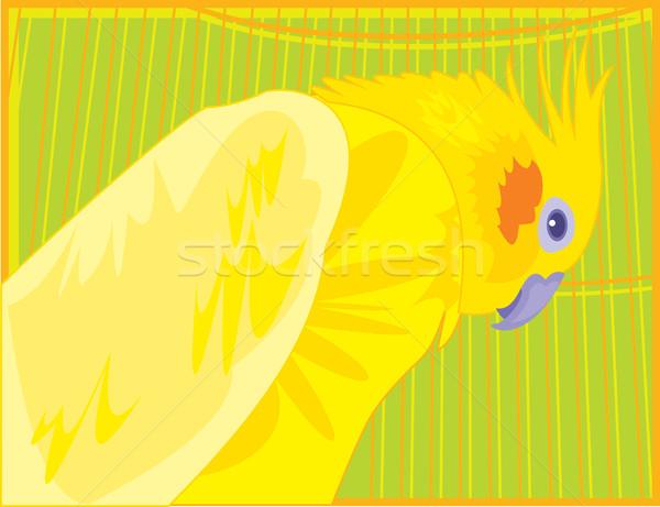 明るい オウム 座って ケージ 自然 ストックフォト © tatiana3337