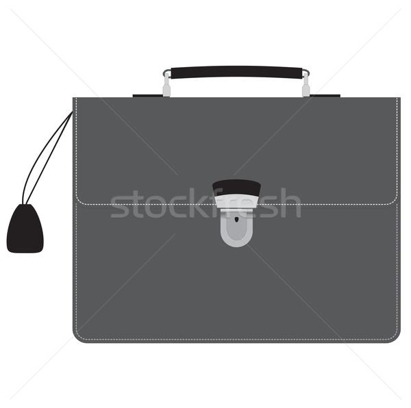 Executive bag Stock photo © Tatik22
