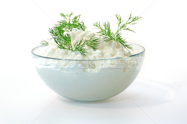 Fresh cottage cheese and fennel  Stock photo © Tatik22