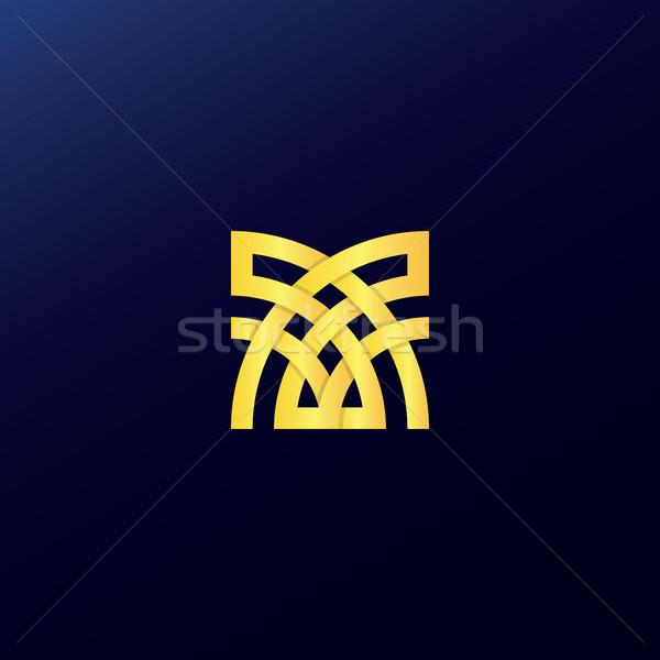 Abstract kruis logo gouden kleur gebouw Stockfoto © taufik_al_amin