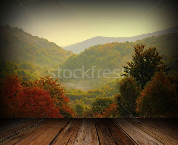 balcony view to the woods Stock photo © taviphoto