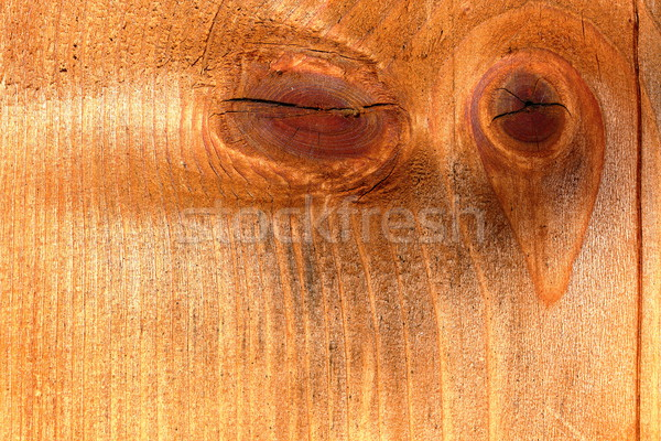knotted spruce plank Stock photo © taviphoto