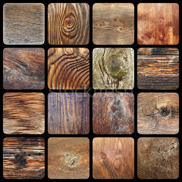 collection of knotted wood textures Stock photo © taviphoto