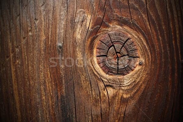 большой узел ель доска древесины аннотация Сток-фото © taviphoto