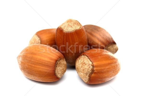 hazelnuts isolated on white background Stock photo © taviphoto
