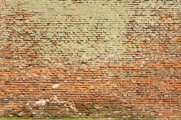 Texture muro di mattoni completo muschio architettonico muro Foto d'archivio © taviphoto