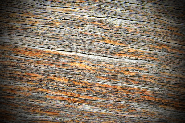 древних дуб древесины внешний Сток-фото © taviphoto