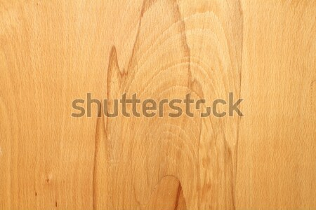 wooden veneer texture Stock photo © taviphoto