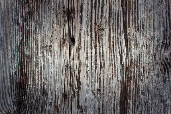 érdekes igazi lucfenyő mintázott panel kész Stock fotó © taviphoto