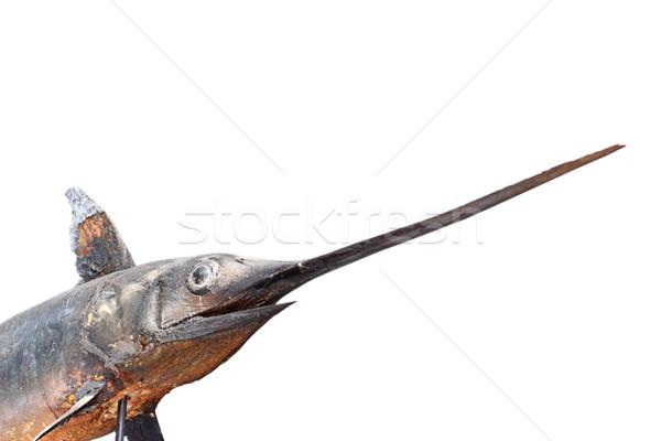 Zwaardvis museum geïsoleerd witte vis zwaard Stockfoto © taviphoto