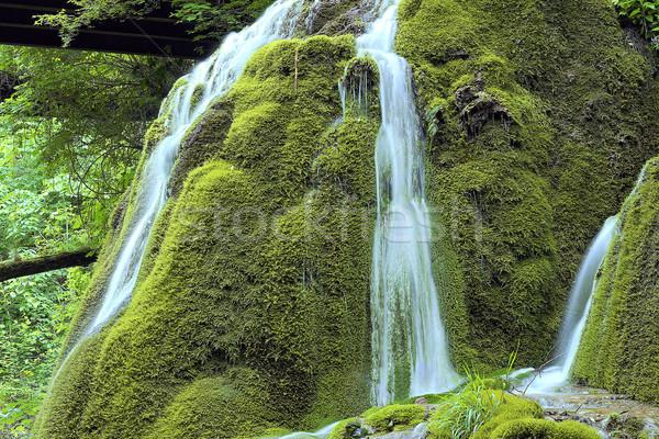 Piękna kaskada rock wodospad szczegół krajobraz Zdjęcia stock © taviphoto