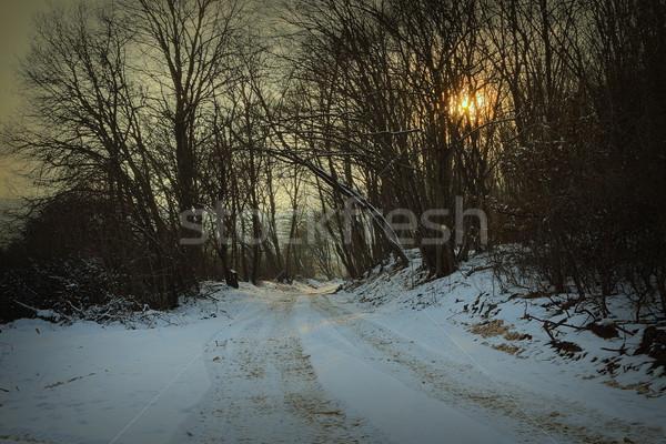 Route forêt aube soleil coucher du soleil Photo stock © taviphoto