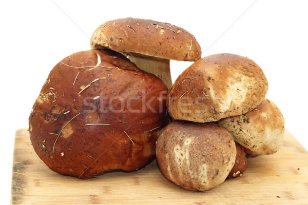 Boleto forestales listo cocina alimentos Foto stock © taviphoto