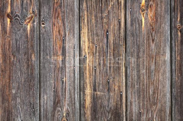 Sujo real enfeitar textura de madeira madeira parede Foto stock © taviphoto