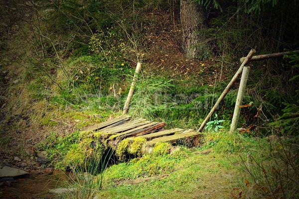 Kicsi sérült fából készült híd hegy erdő Stock fotó © taviphoto