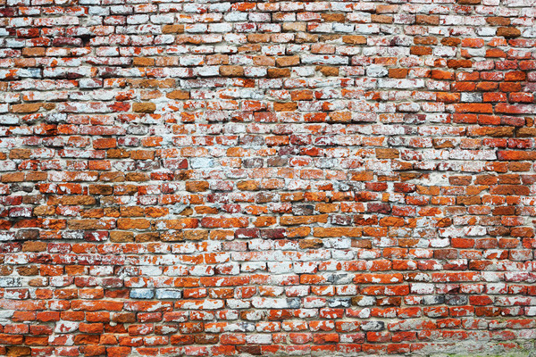 texture of old damaged brick wall Stock photo © taviphoto